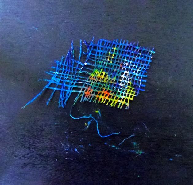 IMGP0484 (2)