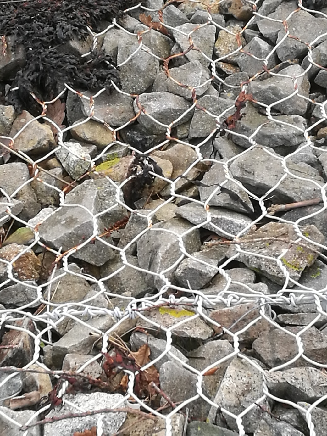 wire mesh and stone...